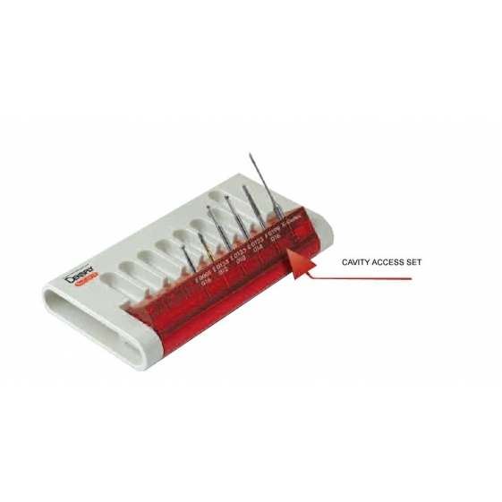Dentsply Cavity Access Set